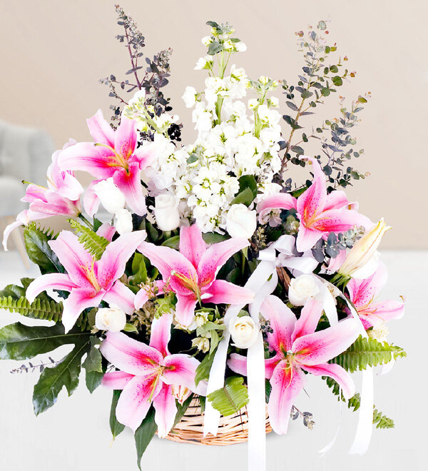 Pink Lilium Gillyflower White Rose