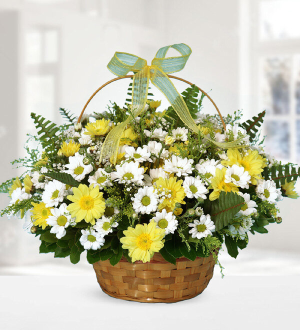 Yellow and White Chrysanthemums