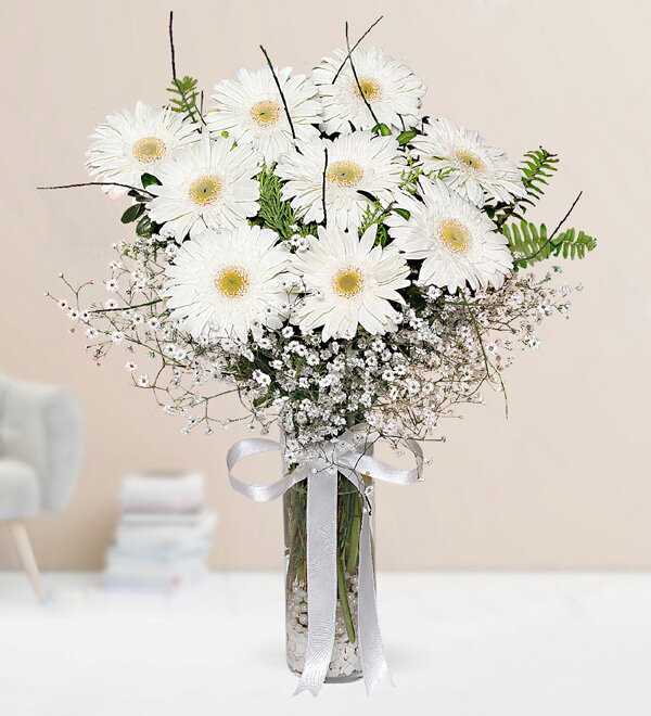 White Gerbera in Vase