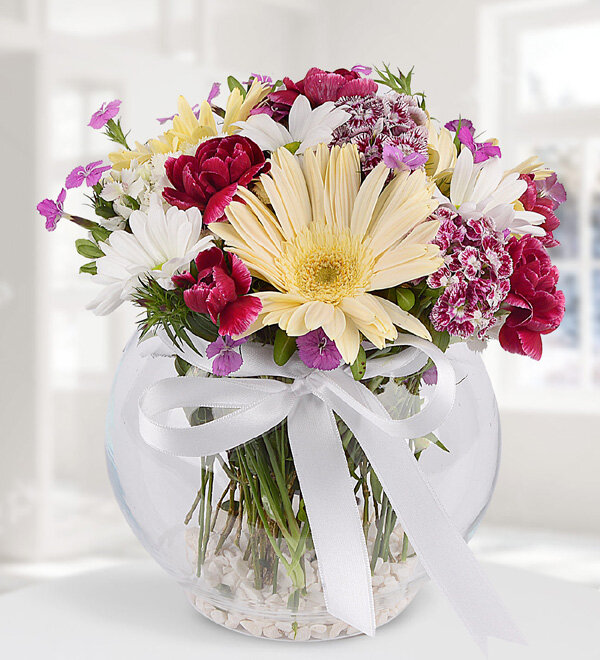 Gerbera and Mixed Flowers