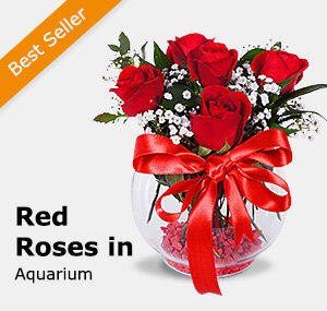 Red Roses in Aquarium